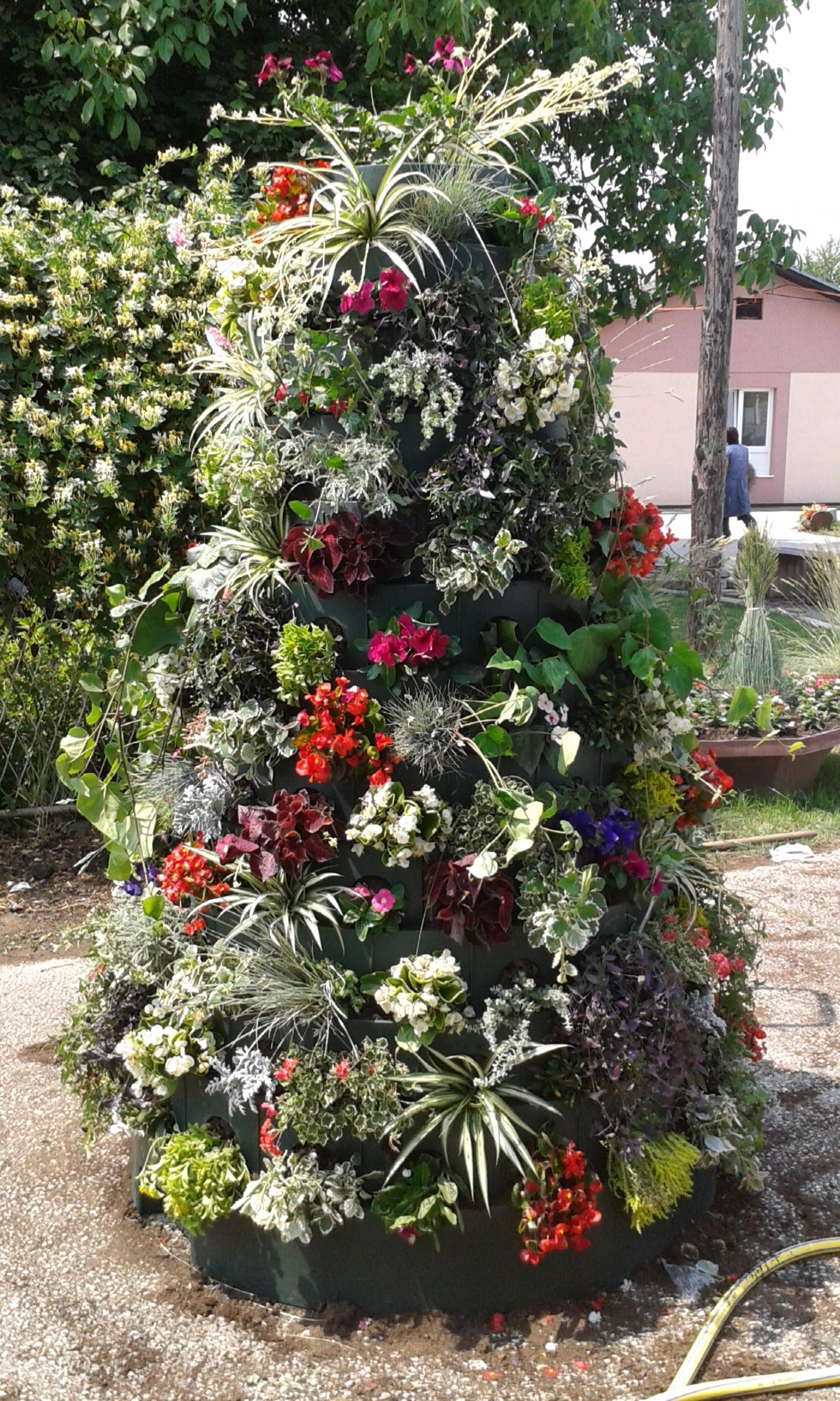 Постављена цветна конструкција на градском шеталишту