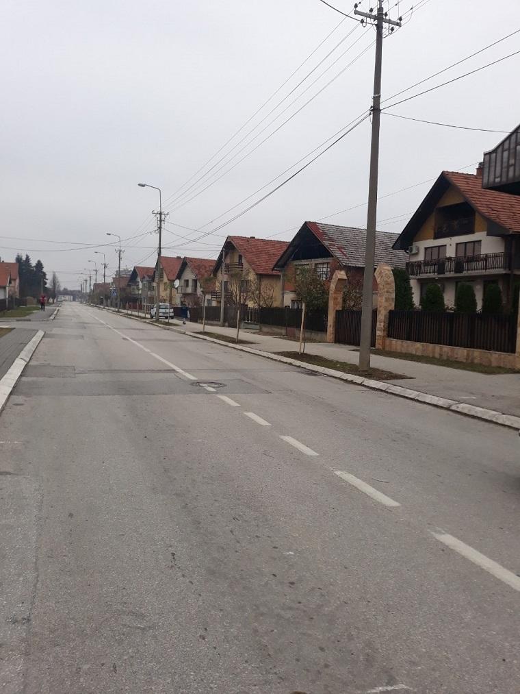 Дрворед у улици Стефана Првовенчаног- садња 60 стабала