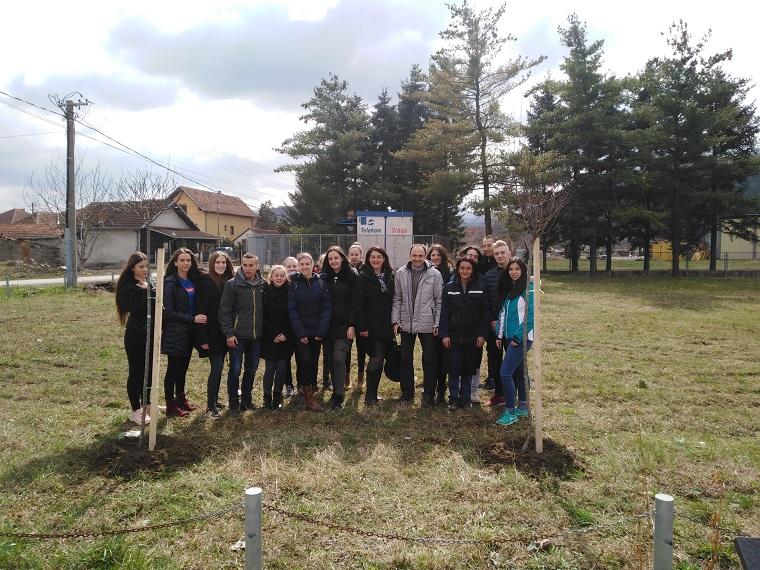 Наша шума брига – садња стабала у Бељини