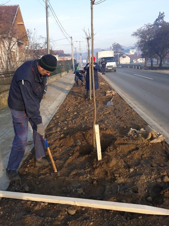 Наша шума, наша брига – садња у МЗ Лугови, улица Александра Савића