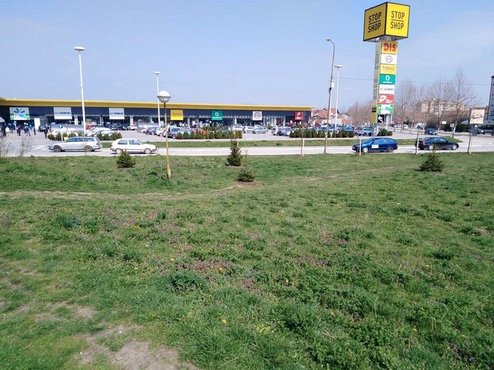 ,,Наша шума, наша брига 2″ садња у Авенији , преко пута ДИС-а
