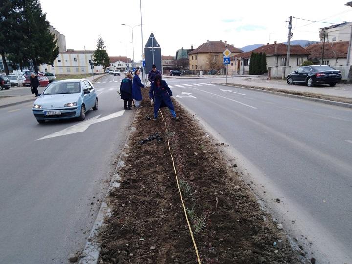 Радови на уређењу зелених острва у улици 10