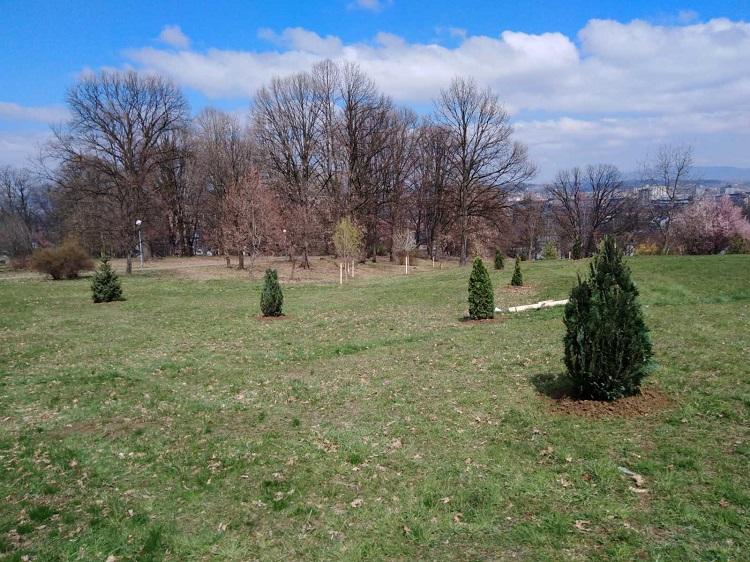 Наставак садње на Спомен парку у оквиру пројекта ,,Наша шума, наша брига  2″